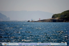 I Cruising Sail dia2 (182)