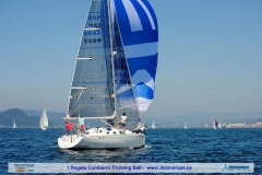 I Cruising Sail dia2 (95)